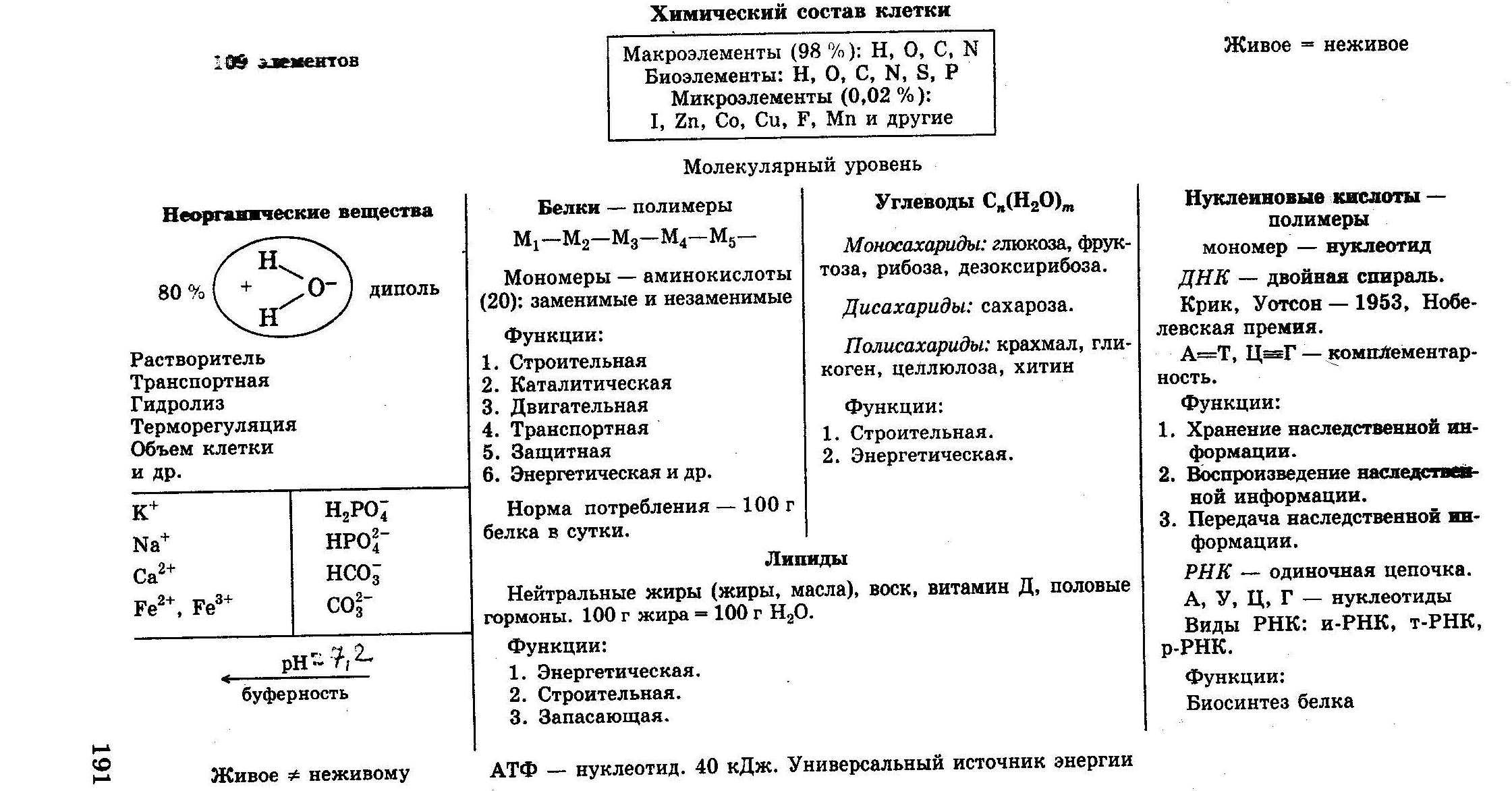состав клеток растений таблица